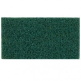 Shine (Medium) Scrubber